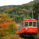 箱根登山鉄道の秋