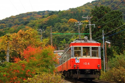 [Autumn in Japan] Autumn Leaves of Hakone