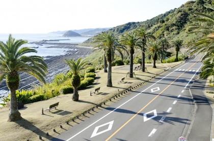 日南海岸と椰子の街路樹