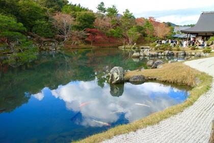 天竜寺庭園