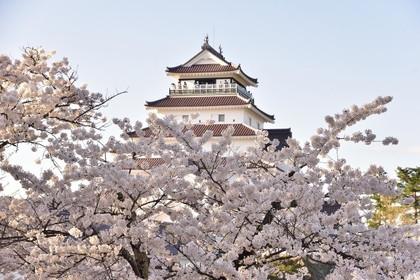 (日本語) 【おすすめ旅 春】浜通りから会津、古関裕而のふるさと中通りまで・福島に春を訪ねて