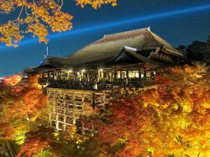 秋の清水寺ライトアップ