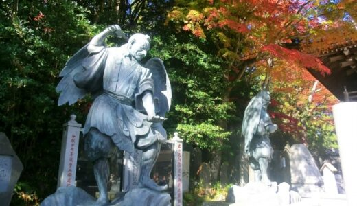 Tokyo Travel Support and Omotenashi Learning Program - from July to October 2021
