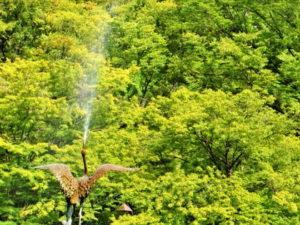 日比谷公園の雲形池にある鶴の噴水