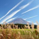 朝霧高原の富士とすすき