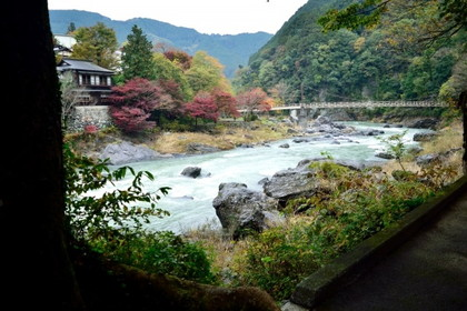 [Autumn in Japan] Okutama Autumn Leaves, Sake Brewery, and Onsen Experience