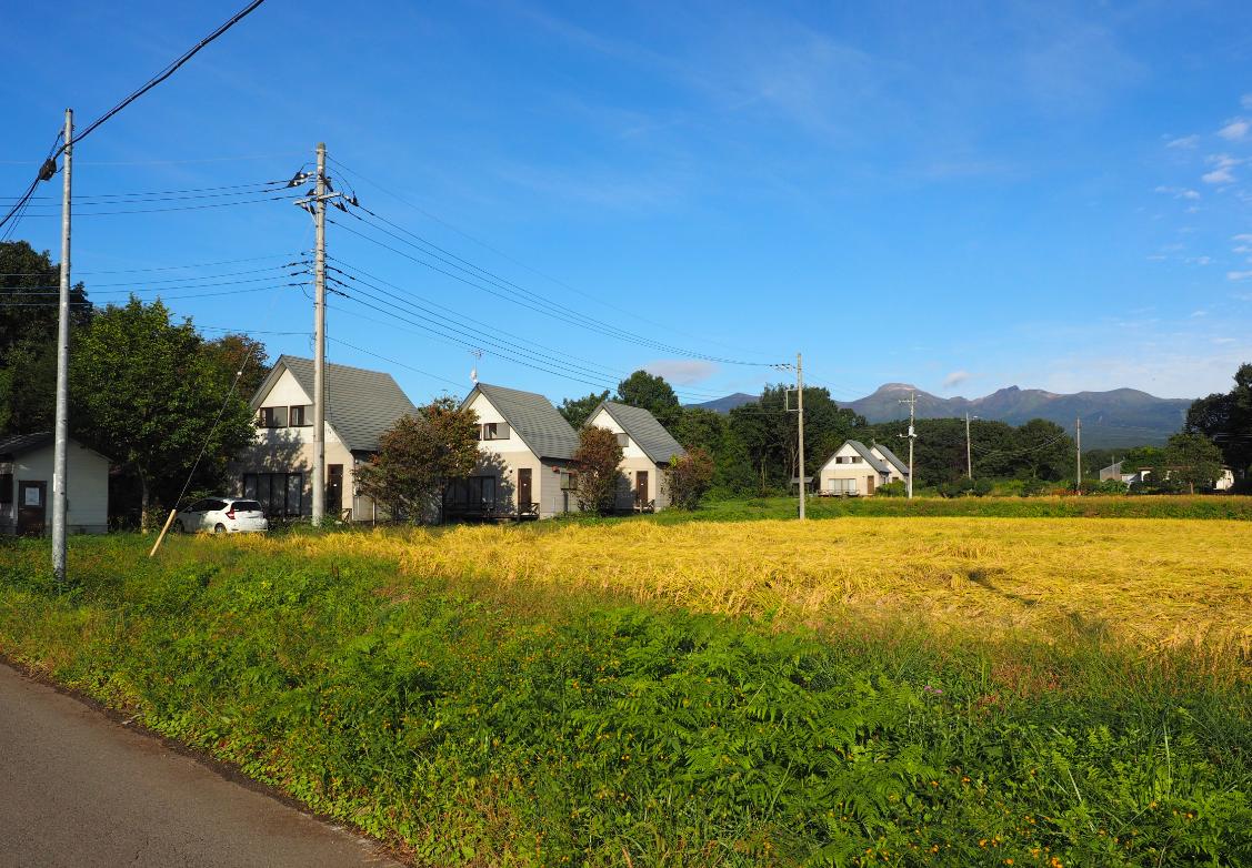 Omutsuhazushi Gakkai 2019 in Nasu - November 16-17, 2019